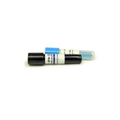 Indicator biologic sterilizare caldură uscată (etuvă) BACILLUS ATROPHAEUS fiolă